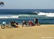 Fatbikes en bambous et planches de surf, Lost in swell